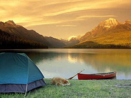 Confira algumas dicas sobre acampamento