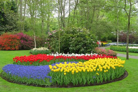 Keukenhof, o maior jardim do mundo