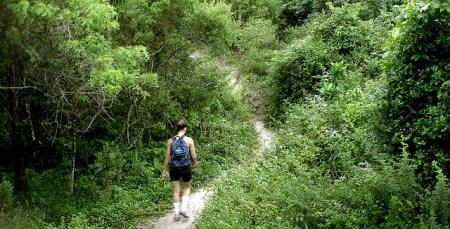 Confira dicas para fazer trilhas