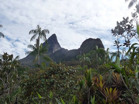Parque Nacional do Pico da Neblina, fundado em 1979